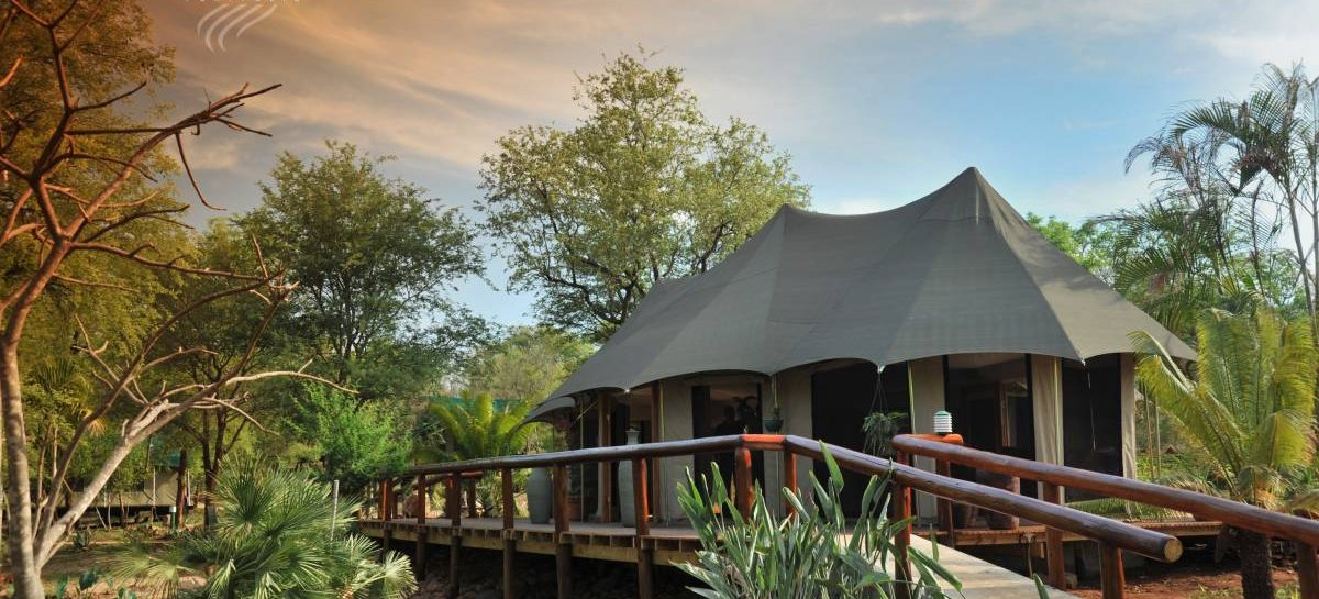 Chisomo Safari Camp, Hoedspruit, South Africa